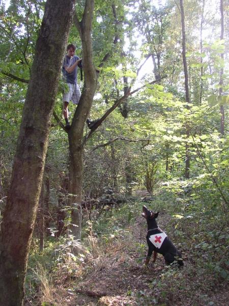 Ajax Falmarka - rescue training